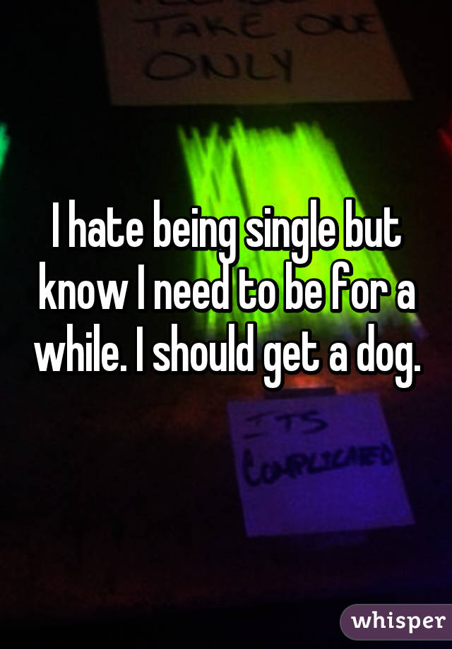 I hate being single but know I need to be for a while. I should get a dog.