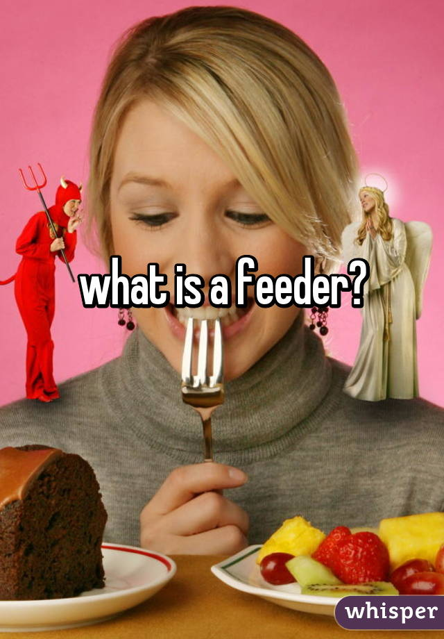 A feeder