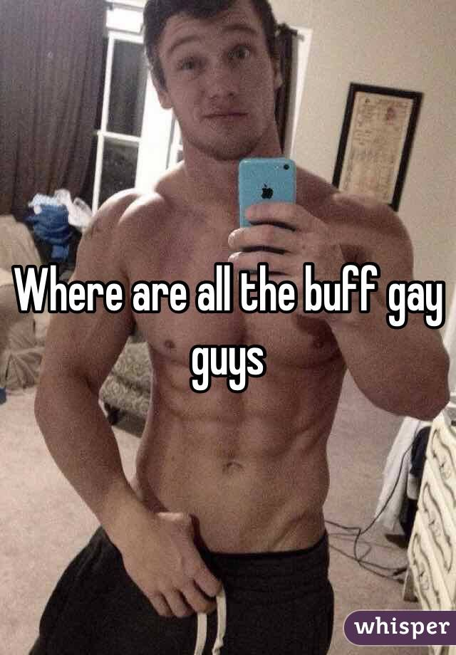 Buff and gay