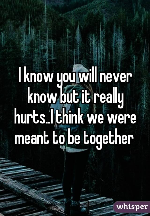 we were never meant to be together