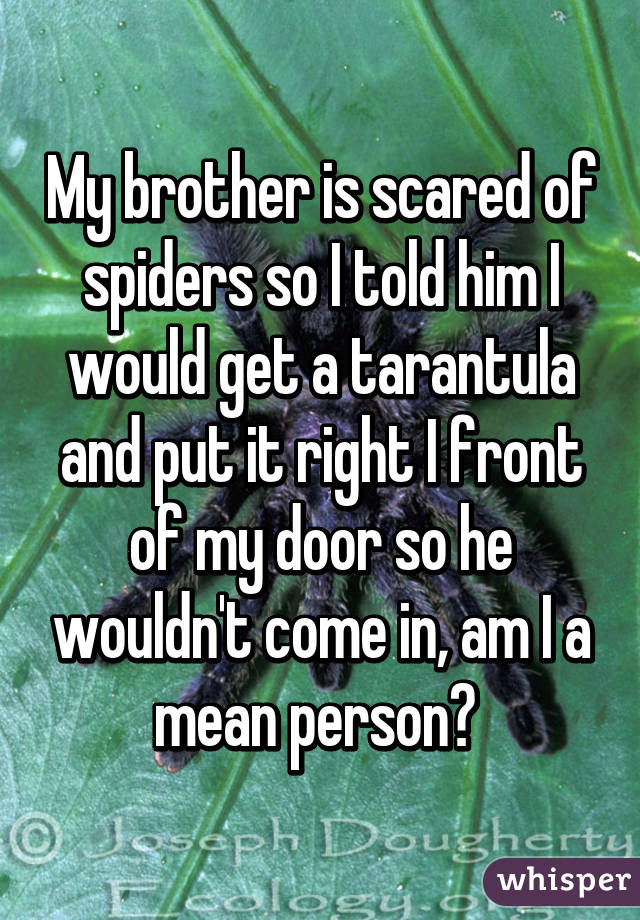 My brother is scared of spiders so I told him I would get a tarantula and put it right I front of my door so he wouldn't come in, am I a mean person?