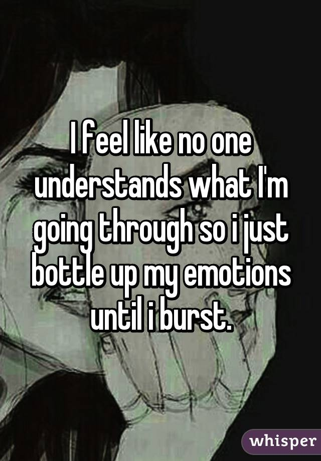 I feel like no one understands what I'm going through so i just bottle up my emotions until i burst.