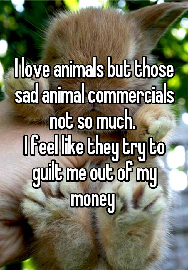 i love animals but those sad animal commercials not so much i feel