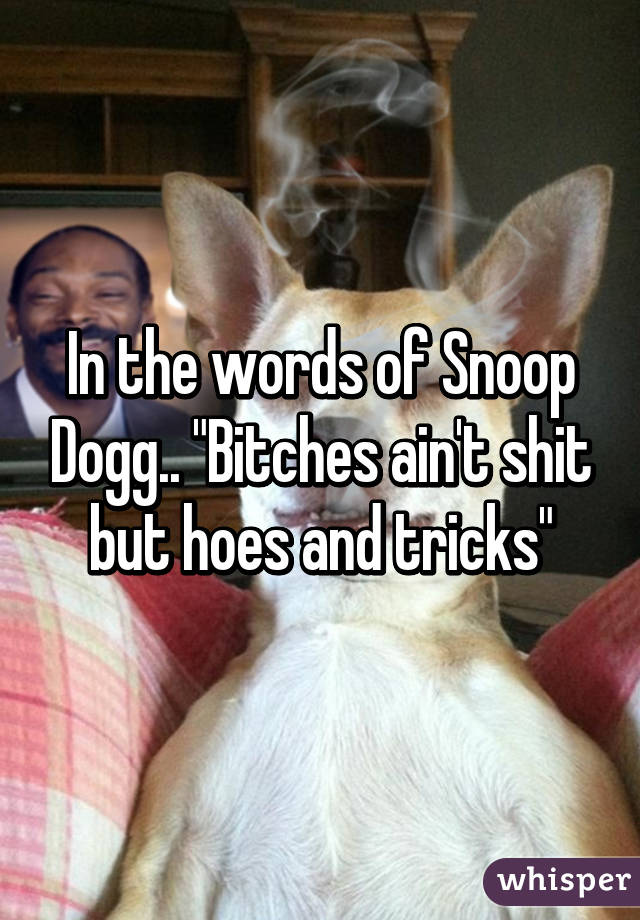 Bitches Aint Shit But Hoes And Tricks