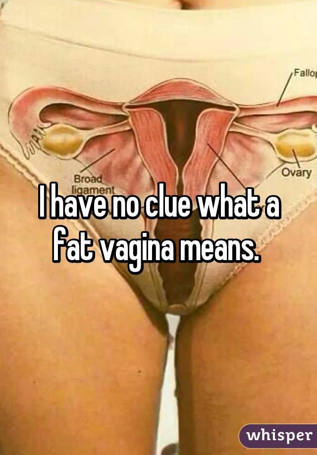 Having A Fat Vagina