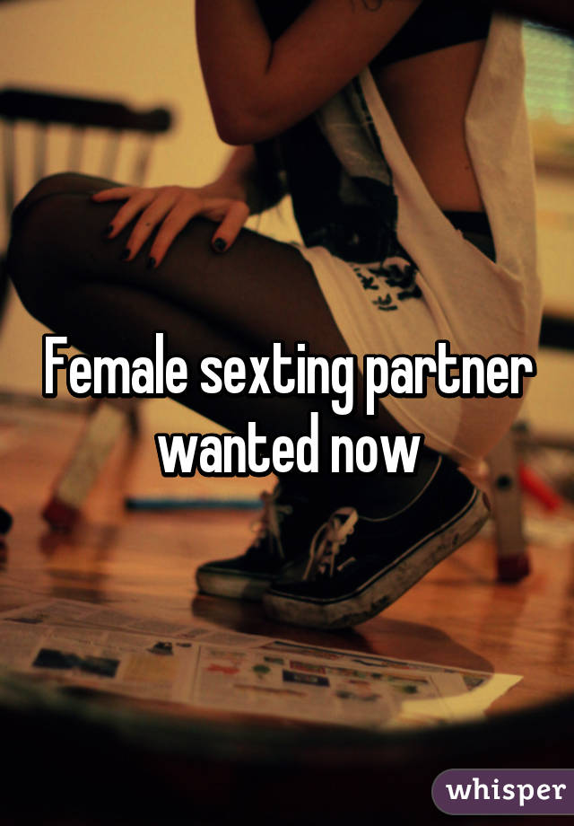 Sexting Partner