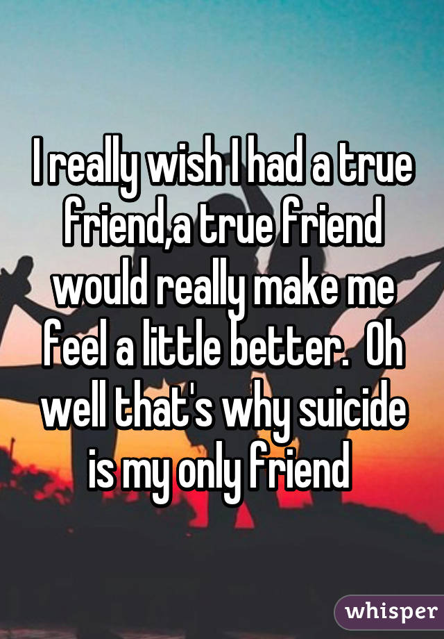 I really wish I had a true friend,a true friend would really make me feel a little better.  Oh well that's why suicide is my only friend