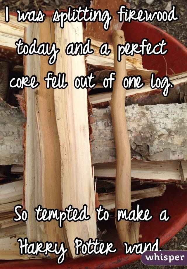 I was splitting firewood today and a perfect core fell out of one log.    So tempted to make a Harry Potter wand.