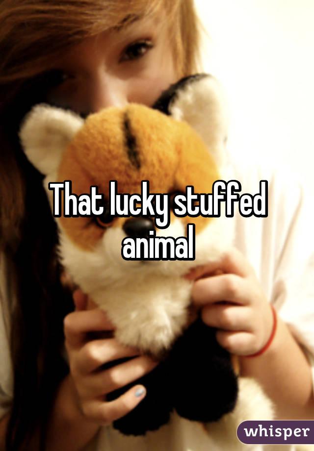 That lucky stuffed animal