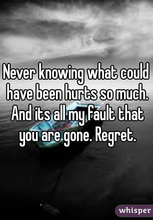 Never knowing what could have been hurts so much. And its all my fault that you are gone. Regret.