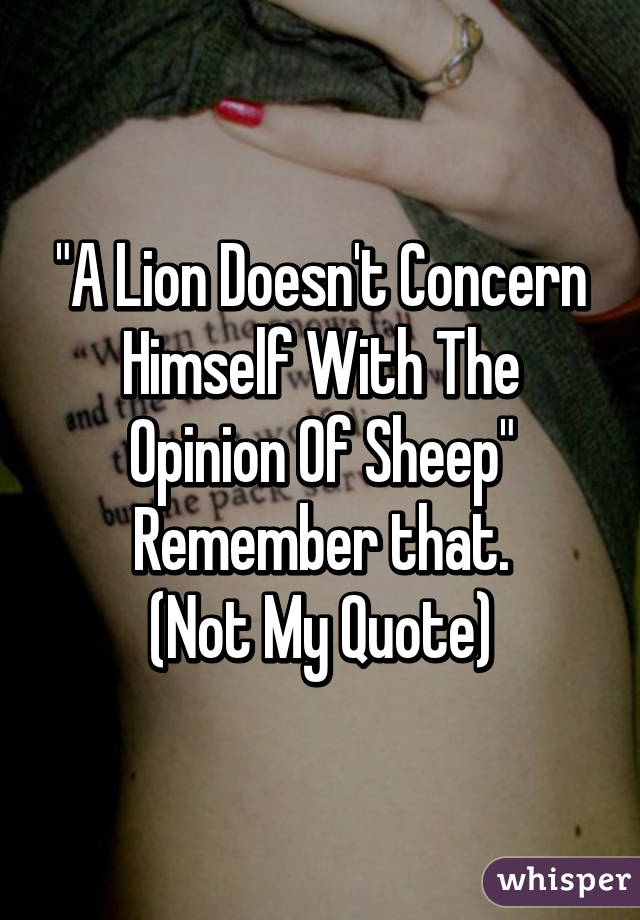 """""""A Lion Doesn't Concern Himself With The Opinion Of Sheep"""" Remember that. (Not My Quote)"""