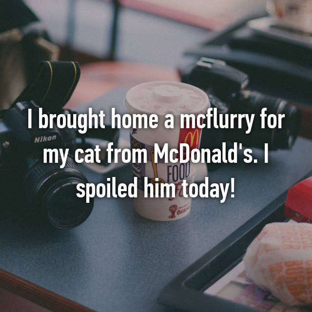 I brought home a mcflurry for my cat from McDonald's. I spoiled him today!