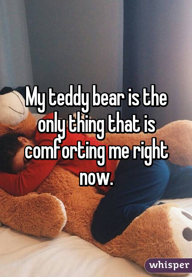 My teddy bear is the only thing that is comforting me right now.