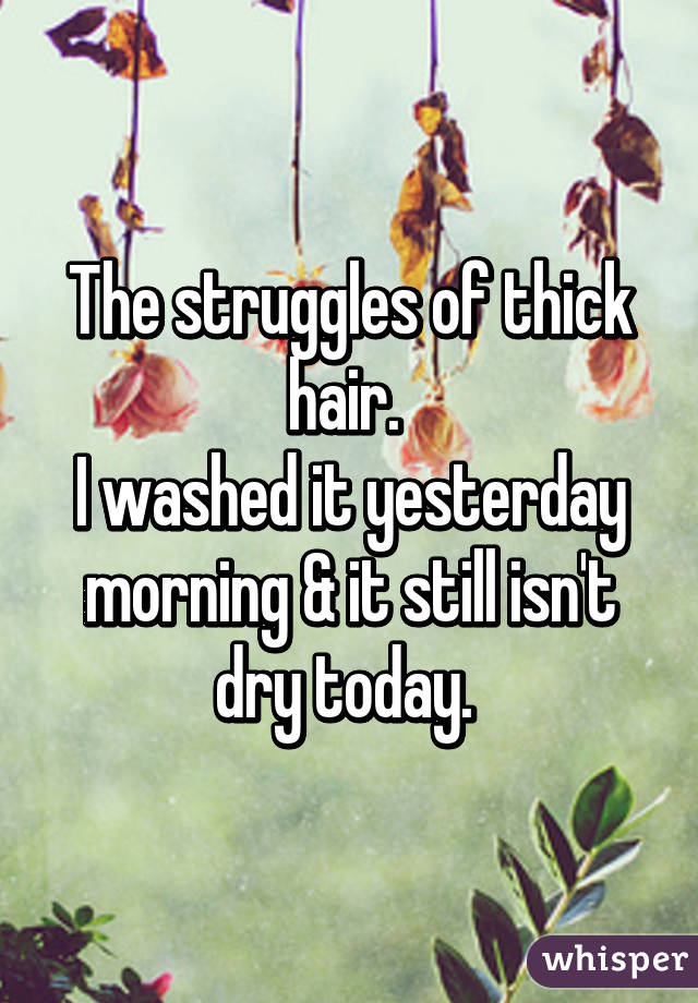 The struggles of thick hair.  I washed it yesterday morning & it still isn't dry today.