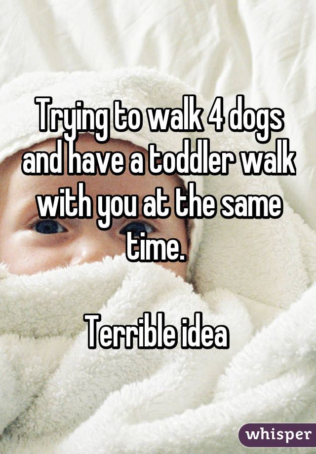 Trying to walk 4 dogs and have a toddler walk with you at the same time.   Terrible idea