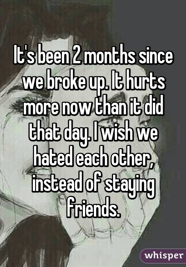 It's been 2 months since we broke up. It hurts more now than it did that day. I wish we hated each other, instead of staying friends.