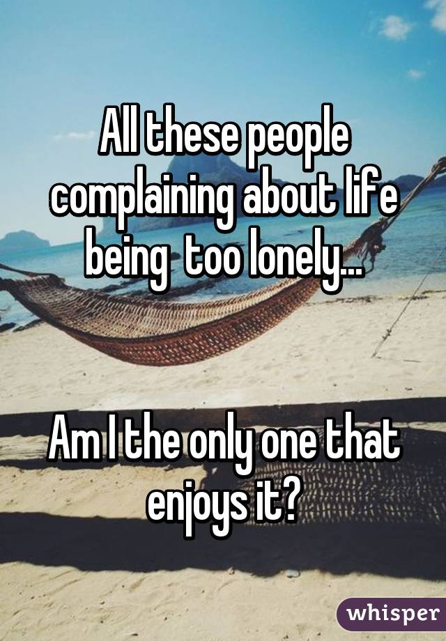 All these people complaining about life being  too lonely...   Am I the only one that enjoys it?