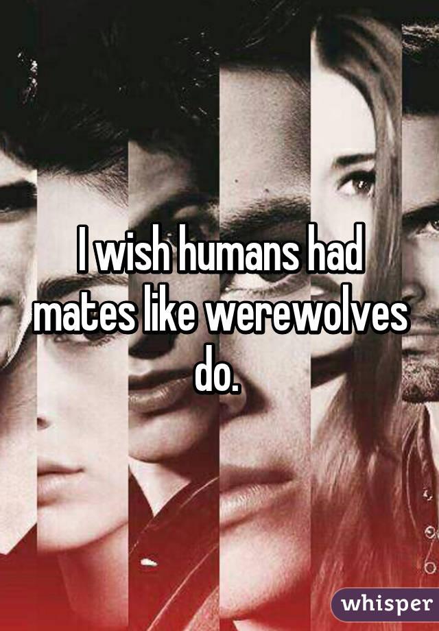 I wish humans had mates like werewolves do.