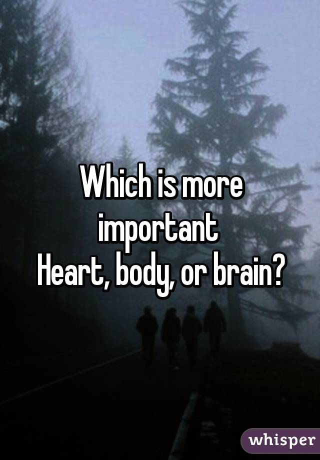 Which is more important  Heart, body, or brain?