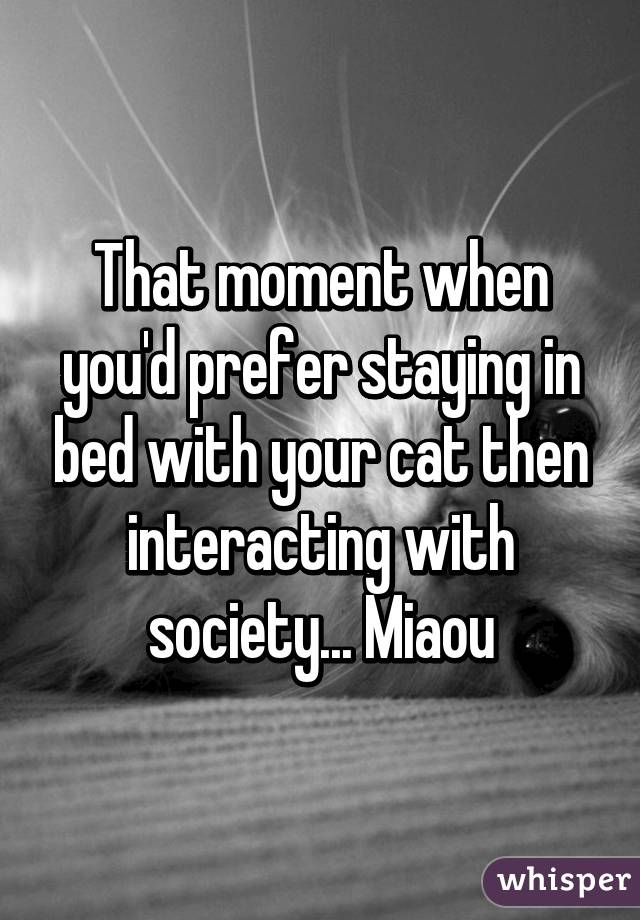 That moment when you'd prefer staying in bed with your cat then interacting with society... Miaou