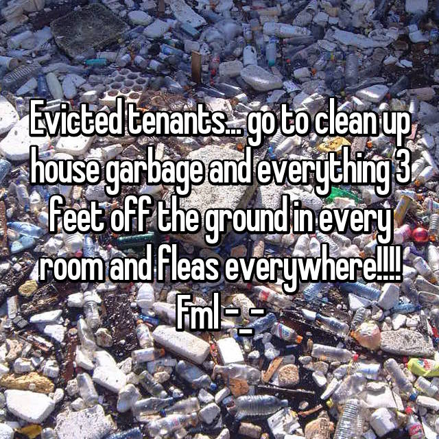 Evicted tenants... go to clean up house garbage and everything 3 feet off the ground in every room and fleas everywhere!!!! Fml -_-