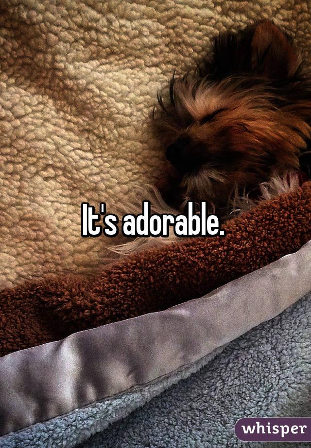 It's adorable.
