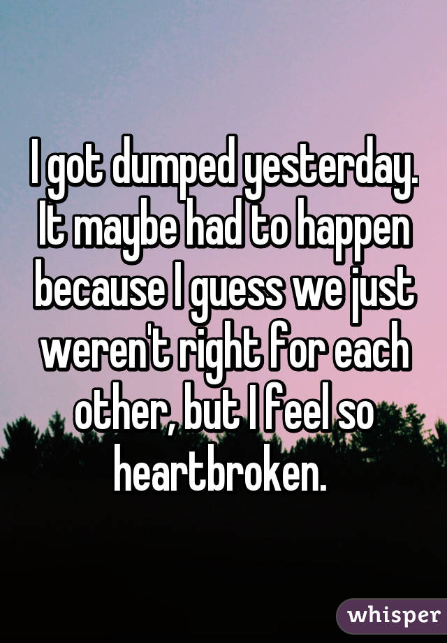 I got dumped yesterday. It maybe had to happen because I guess we just weren't right for each other, but I feel so heartbroken.