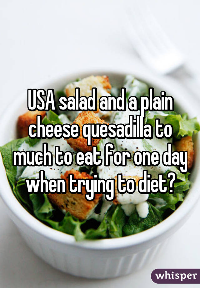 USA salad and a plain cheese quesadilla to much to eat for one day when trying to diet?