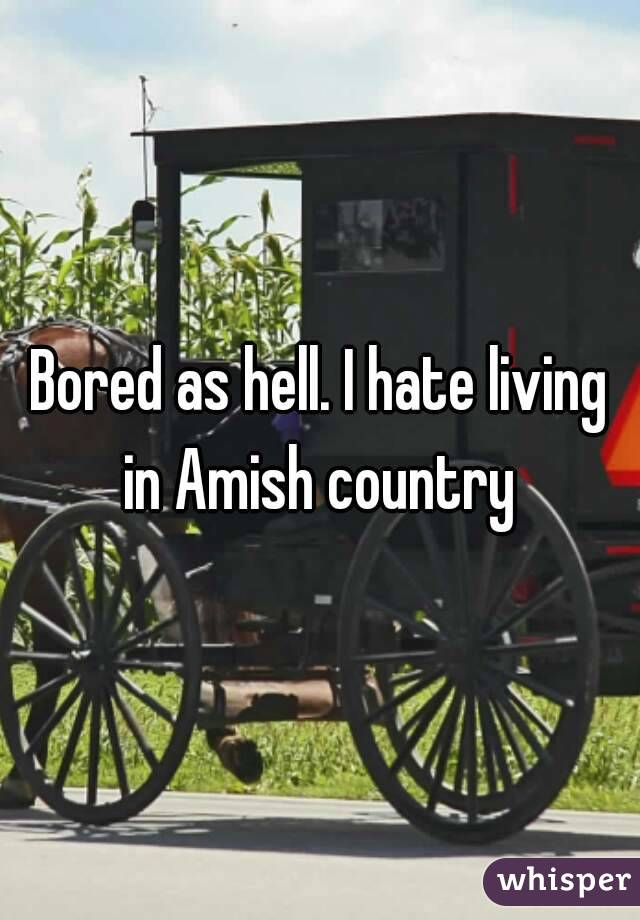 Bored as hell. I hate living in Amish country