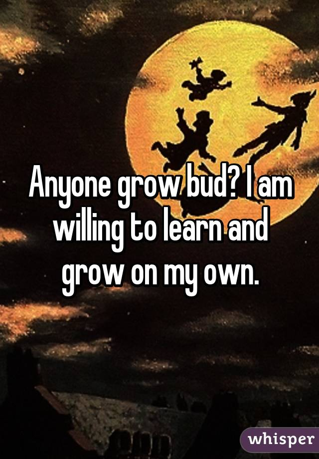 Anyone grow bud? I am willing to learn and grow on my own.