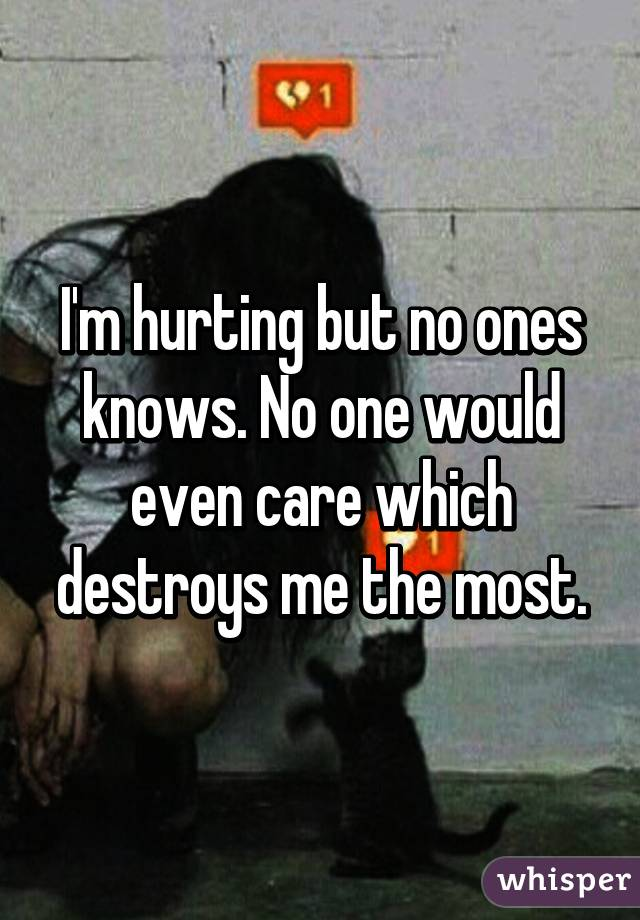 I'm hurting but no ones knows. No one would even care which destroys me the most.