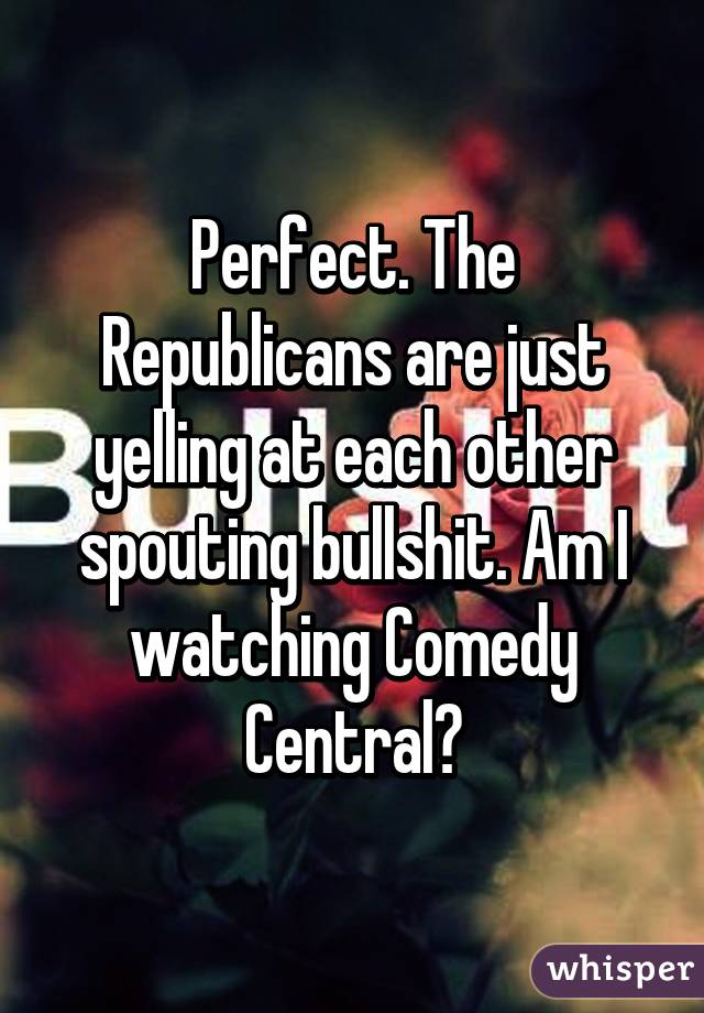 Perfect. The Republicans are just yelling at each other spouting bullshit. Am I watching Comedy Central?