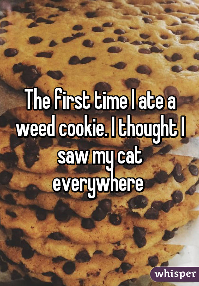 The first time I ate a weed cookie. I thought I saw my cat everywhere