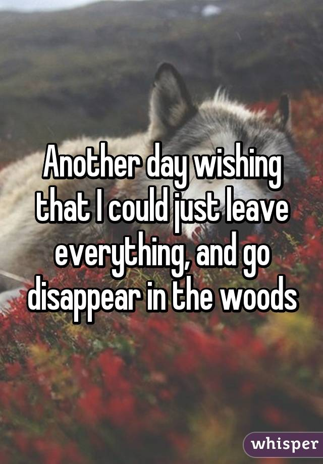 Another day wishing that I could just leave everything, and go disappear in the woods