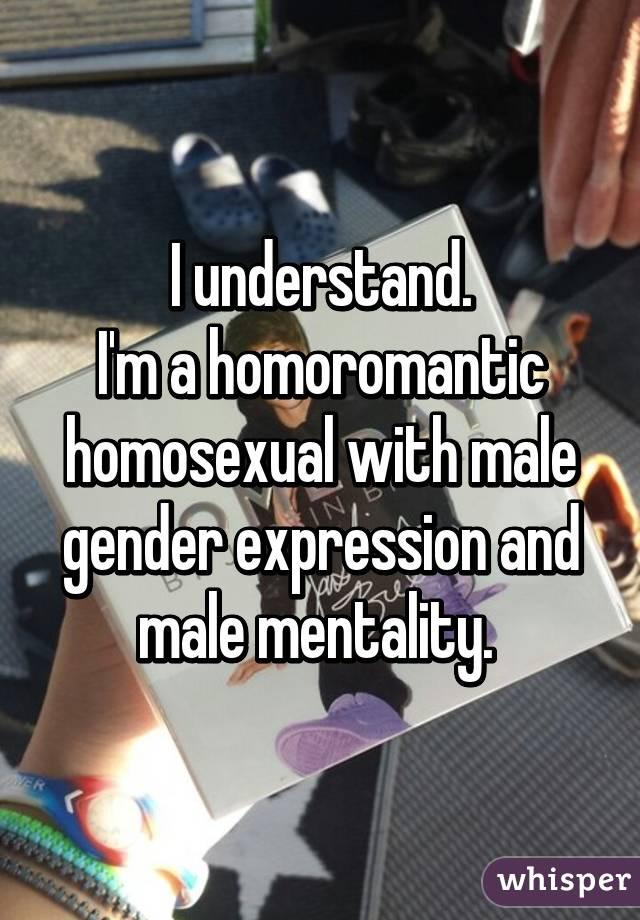 Homosexual and homoromantic