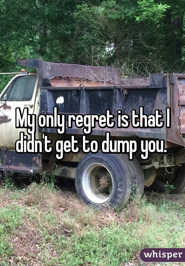 My only regret is that I didn't get to dump you.