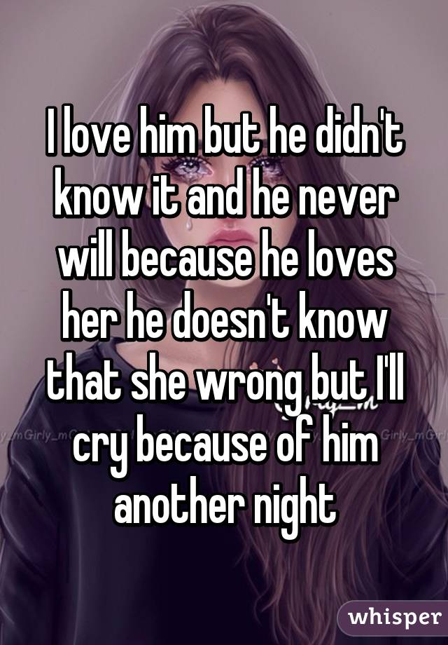 I love him but he didn't know it and he never will because he loves her he doesn't know that she wrong but I'll cry because of him another night
