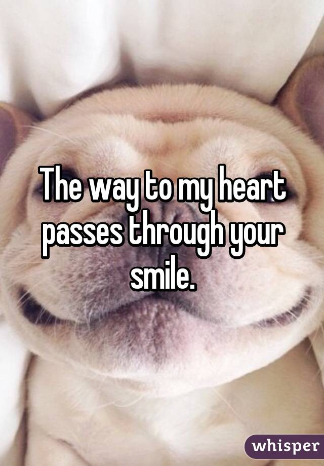 The way to my heart passes through your smile.