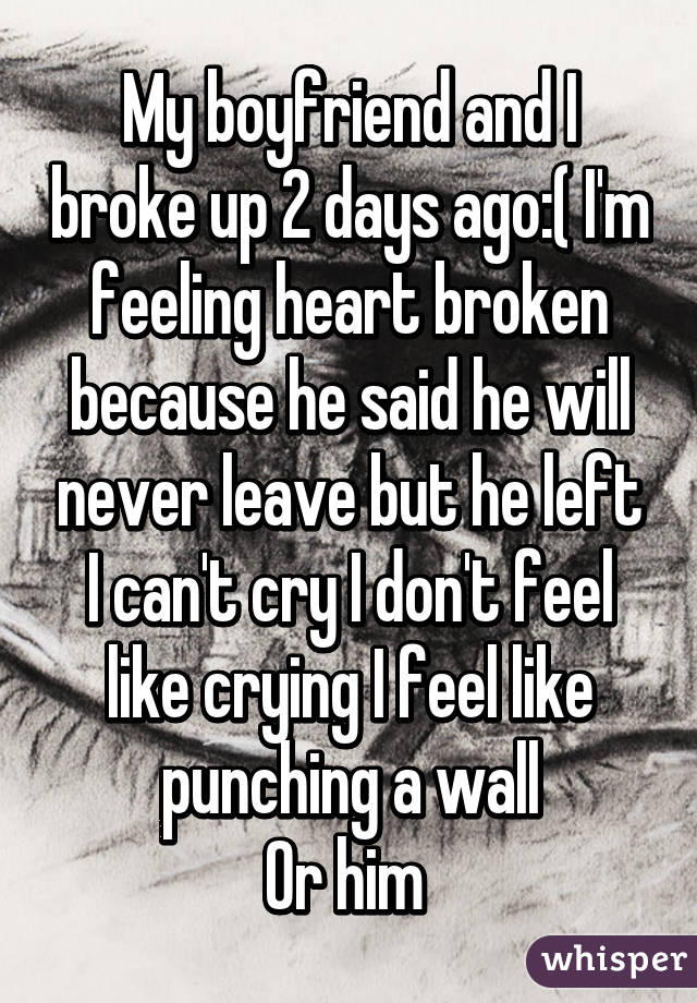 My boyfriend and I broke up 2 days ago:( I'm feeling heart broken because he said he will never leave but he left I can't cry I don't feel like crying I feel like punching a wall Or him