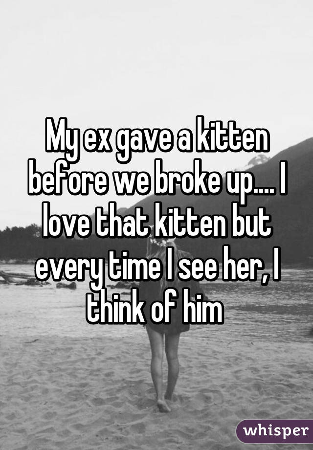 My ex gave a kitten before we broke up.... I love that kitten but every time I see her, I think of him