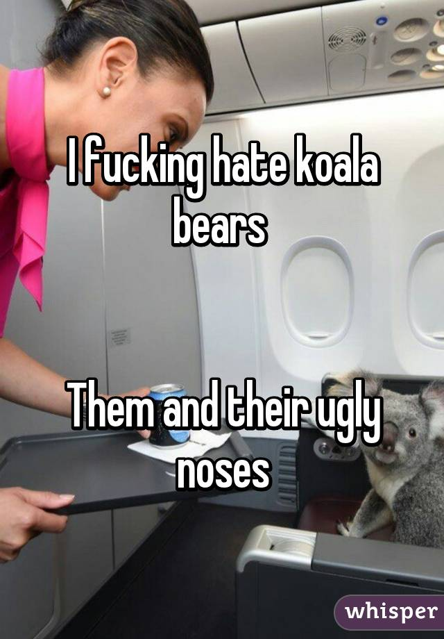 I fucking hate koala bears    Them and their ugly noses