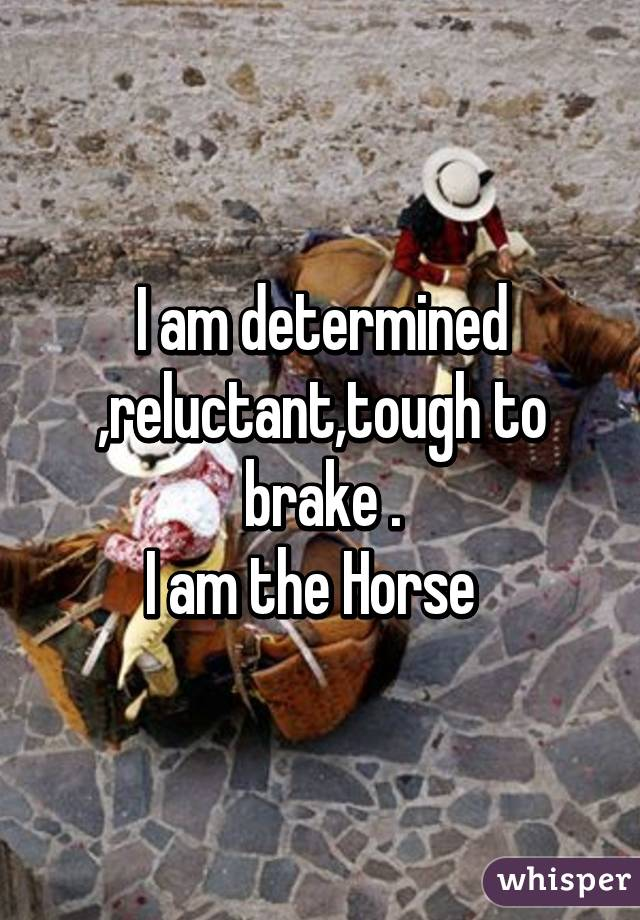 I am determined ,reluctant,tough to brake . I am the Horse
