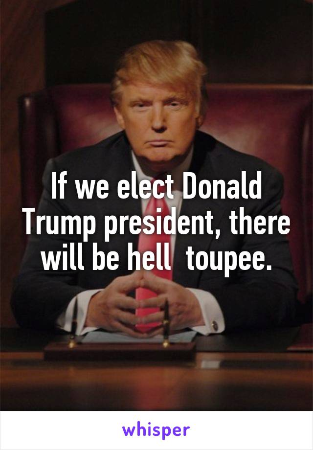 If we elect Donald Trump president, there will be hell  toupee.
