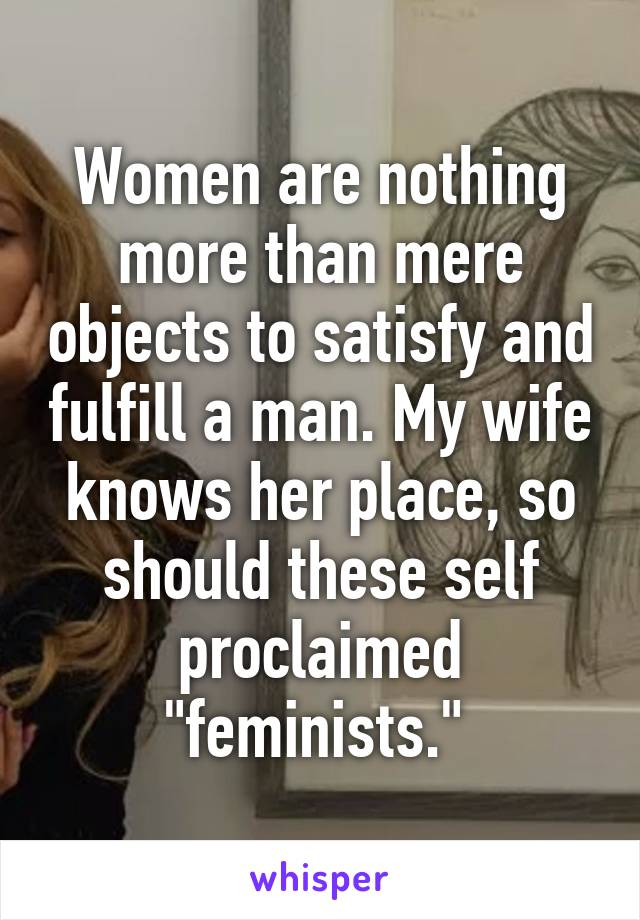 """Women are nothing more than mere objects to satisfy and fulfill a man. My wife knows her place, so should these self proclaimed """"feminists."""""""
