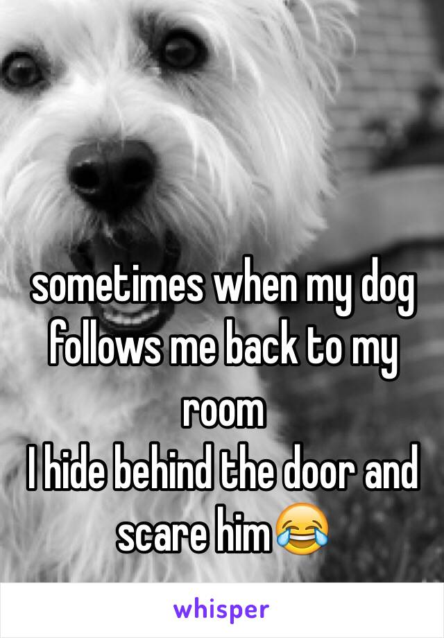 sometimes when my dog follows me back to my room  I hide behind the door and scare him😂