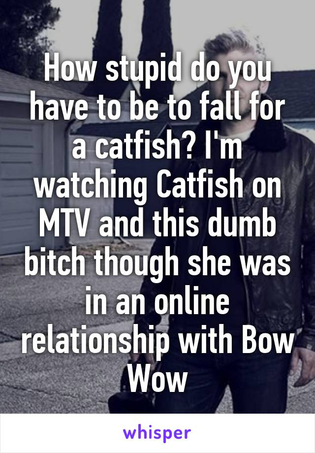 How stupid do you have to be to fall for a catfish? I'm watching Catfish on MTV and this dumb bitch though she was in an online relationship with Bow Wow
