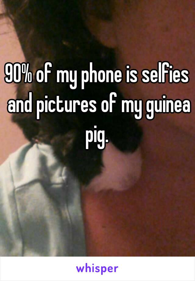 90% of my phone is selfies and pictures of my guinea pig.