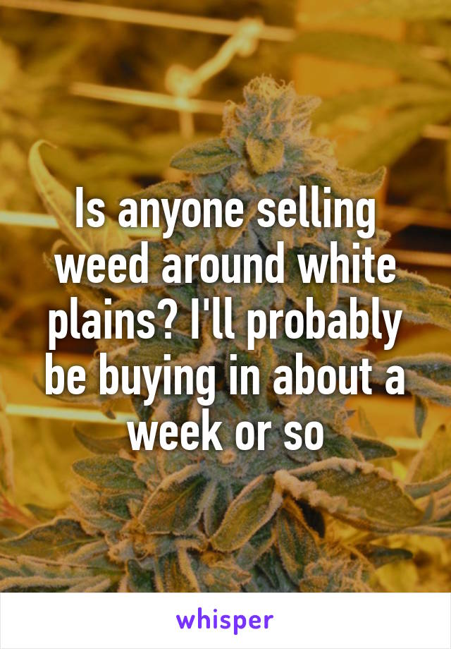 Is anyone selling weed around white plains? I'll probably be buying in about a week or so
