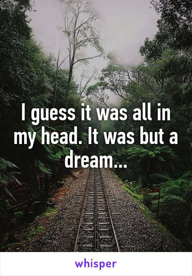 I guess it was all in my head. It was but a dream...