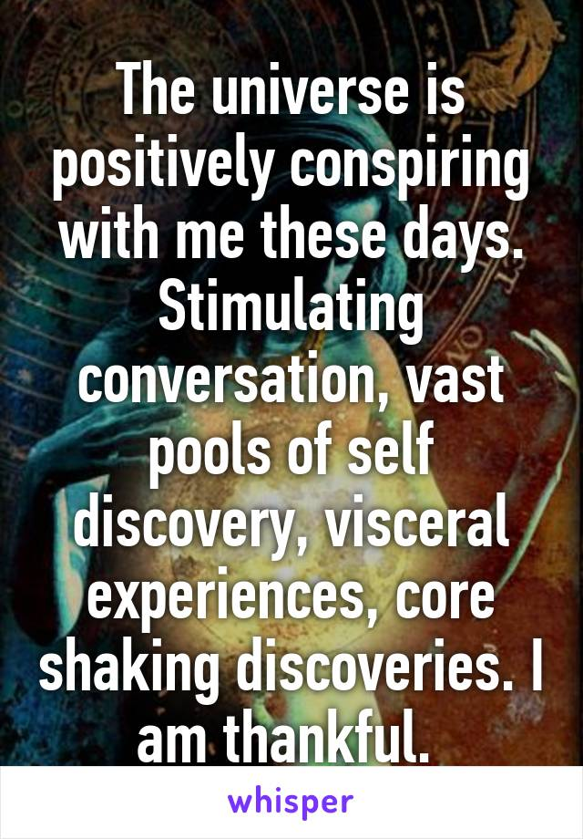 The universe is positively conspiring with me these days. Stimulating conversation, vast pools of self discovery, visceral experiences, core shaking discoveries. I am thankful.
